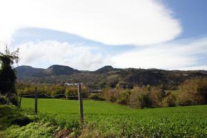Stalle Monte Carpegna